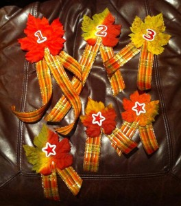 Ribbons for Apple Pie Contest